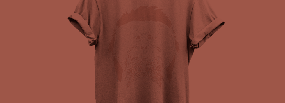 Orangutan colour collection Tshirt.png