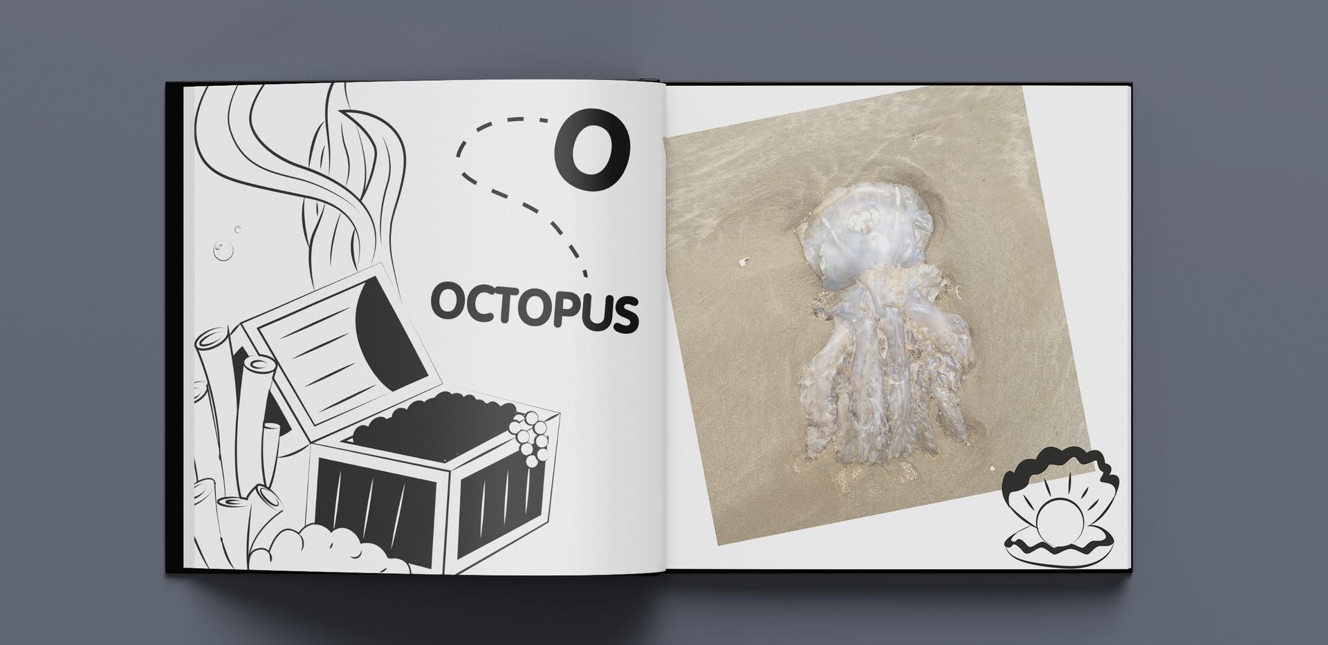 jellyfish o.jpg