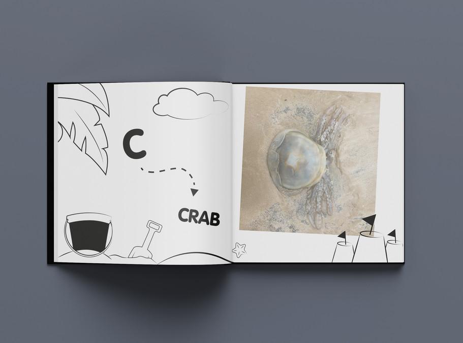 jellyfish c.jpg
