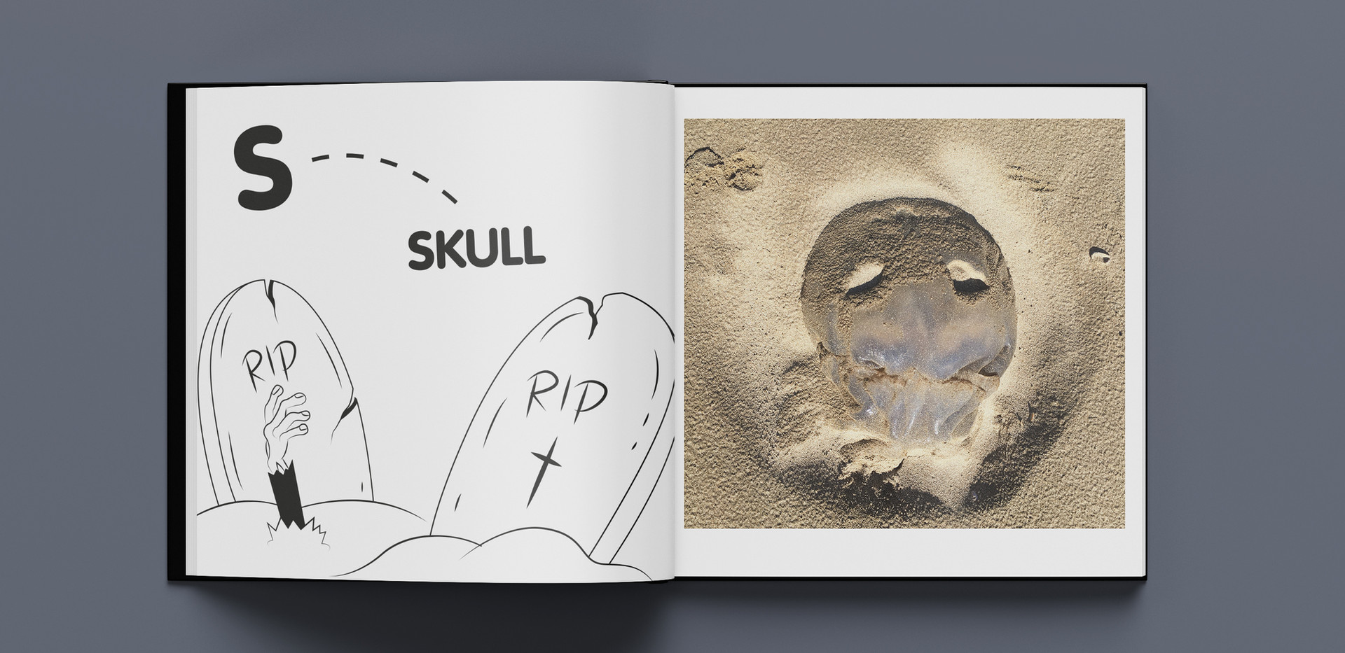 jellyfish s.jpg