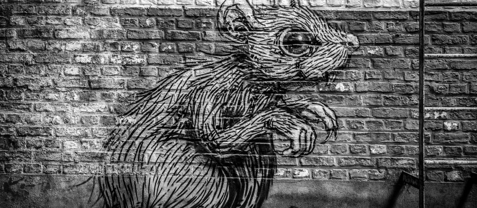 Systematisch. Anpassungsfähig. Schnell. R.A.T. Lab – Wenn die Ratten übernehmen