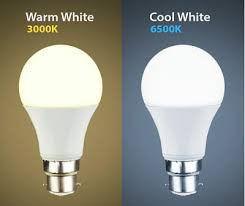 Led warm and cool white bulbs