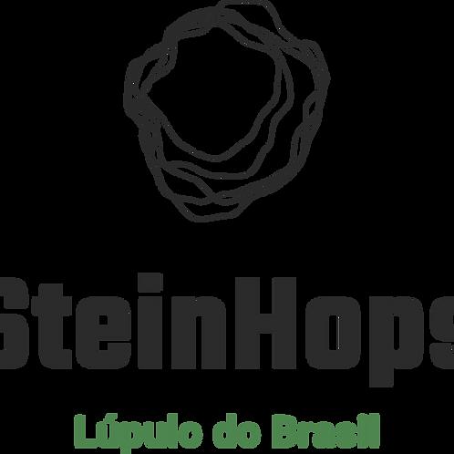 Mentoria! 1 hora falando sobre lúpulo! + Ebook - Lúpulo Brasil!