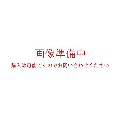 夏用バックジップWETパンツ2mm0mm(ネッスル)