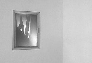 'Glimpses' video installation