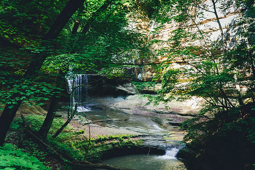 LaSalle Canyon 2 - (Print only)