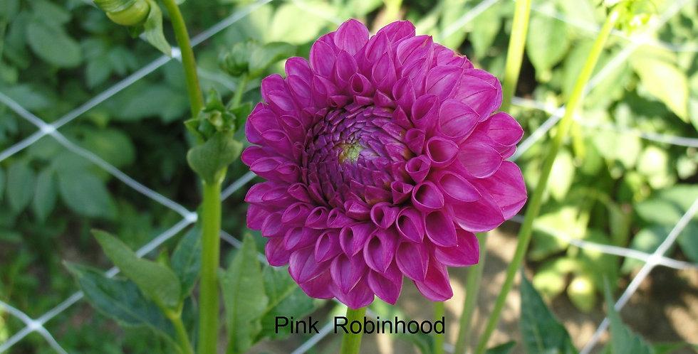 Pink Robinhood
