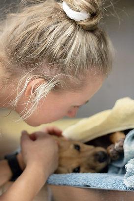 veterinary assistant.jpg