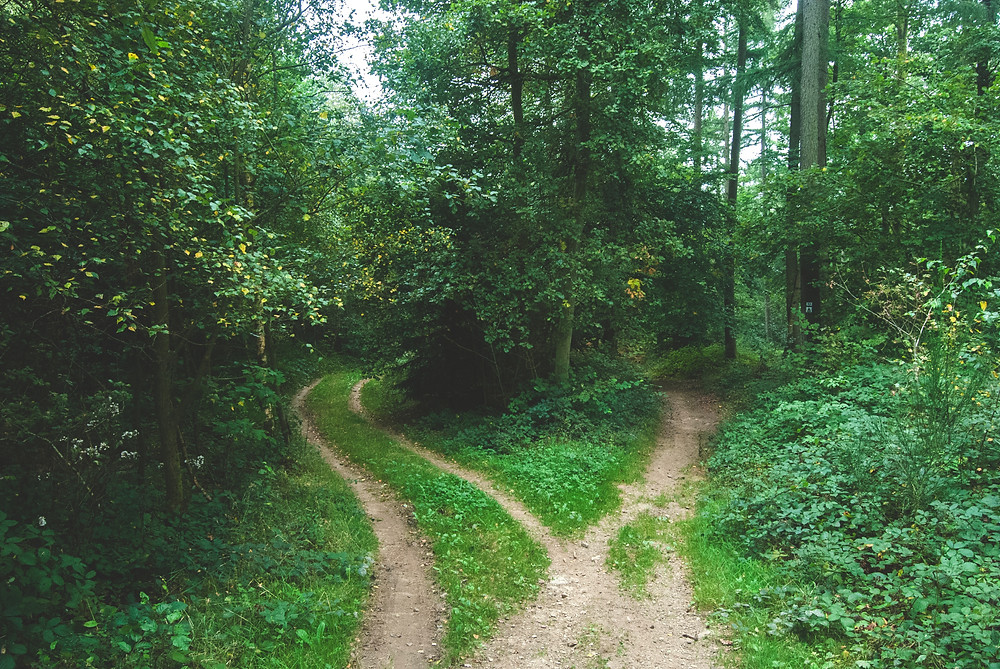 Listen to your intuition (at crossroads) to create your dream business