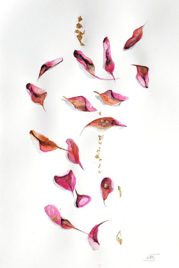 feuilles roses éparpillées (automne)