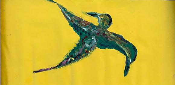 paradise birds 1