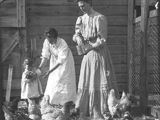 A Poultry Shrinkbag Blog?