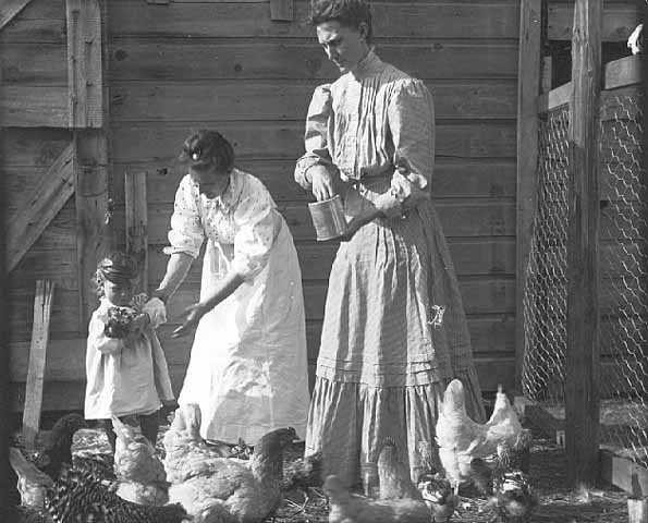 Vintage Women Feeding Chickens