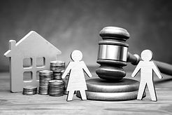 Divorce%20by%20law.%20Division%20of%20pr