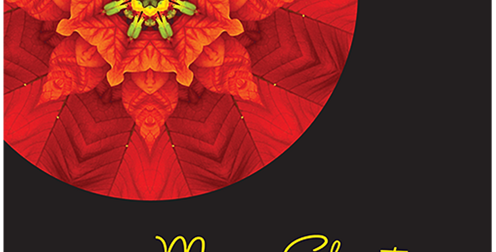 11095: Christmas Poinsettia Mandala, Black Background
