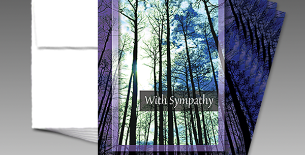 09055P: (6-Pack) Sympathy Forest Scene