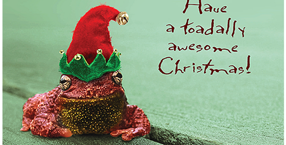 11028: A Toadally Awesome Christmas!