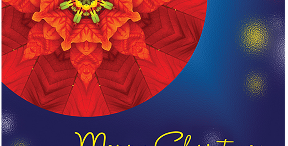 11097: Christmas Poinsettia Mandala, Glow Background