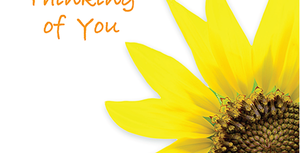 11024: Thinking of You, Sunflower