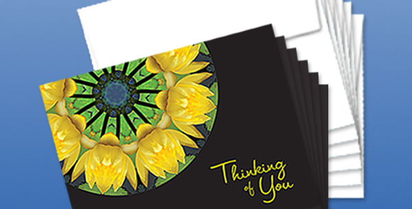 11090P: (6-Pack) Water Lilies Thinking of You, Black