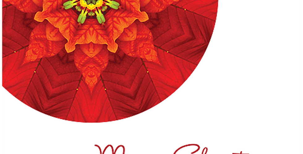 11096: Christmas Poinsettia Mandala, White Background