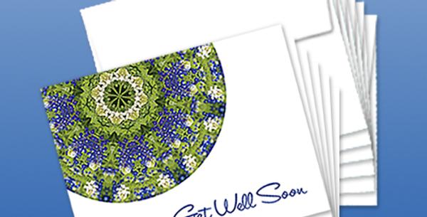 11085P: (6-Pack) Bluebonnet, Get Well Soon