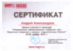 Сертификат Levl 1