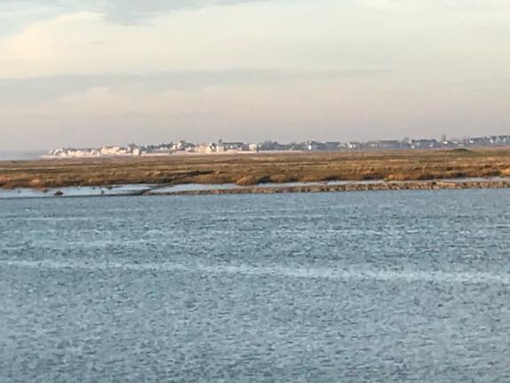 Baie de Somme-L'estran.jpg
