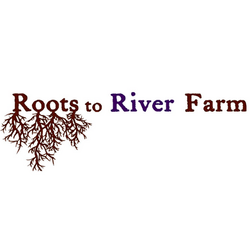 Roots To River Square