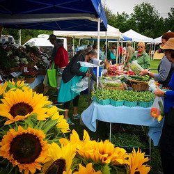 Wrightstown Farmers Market is the perfec