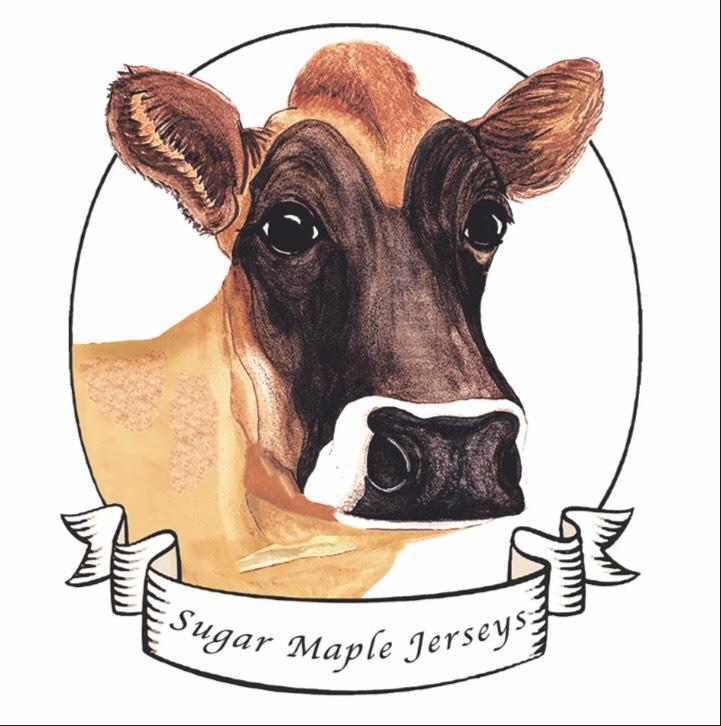 Sugar Maple Jerseys