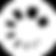לוגו זוהר הסולם סופי.png