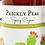 Thumbnail: Prickly Pear Cajun Spice BBQ Sauce