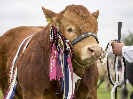 Ticket Zone to provide Group Ticket Sales for Devon County Show