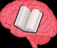 neuroimaging of LD.png