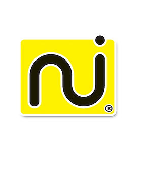 logo NetFun Italia srl.jpg