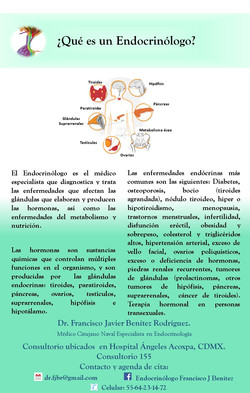 ¿Que es un Endocrinólogo?