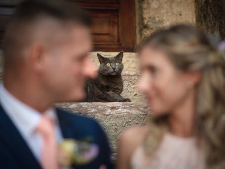 Matrimonio a Malcesine, Servizio fotografico dal Rivellino al Centro Storico.