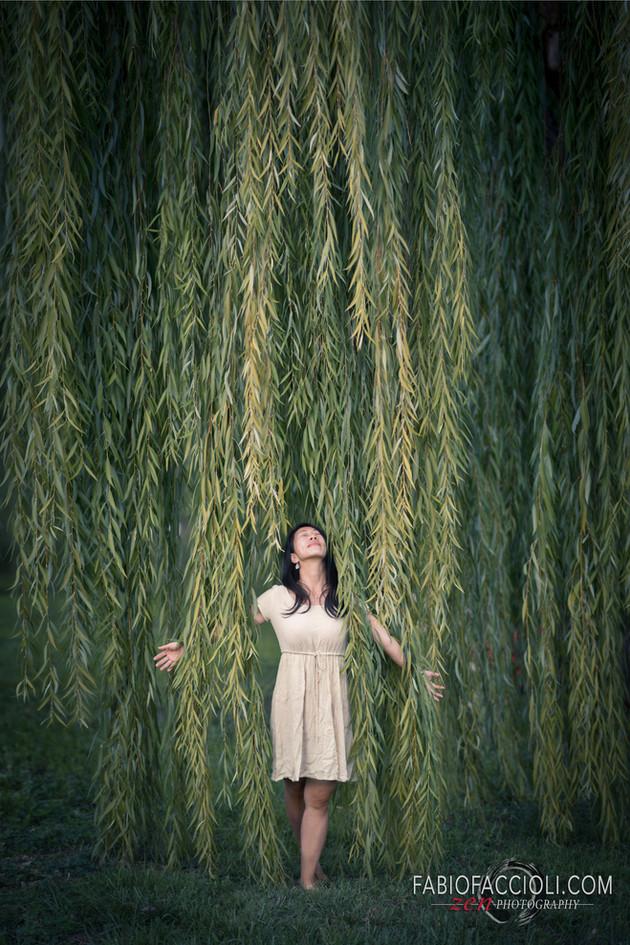 fotografo sirmione.jpg
