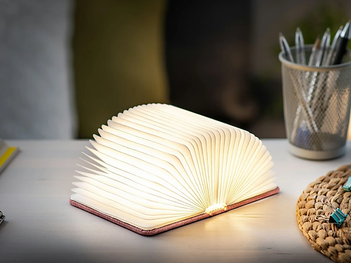Smart Book Light Mini
