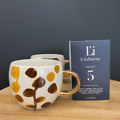 Infusion DELICE N°5 sachets