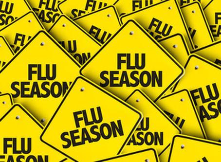 Flu and Illness Update