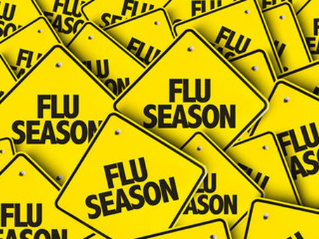 Flu and Illness Update