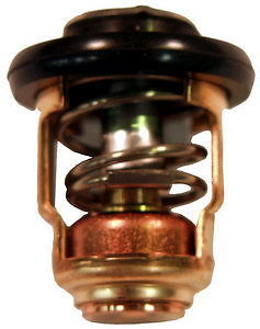 6E5-12411-30-00  thermostat