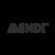 mendi-the-initiative.png