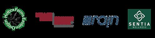 initiative-sponsors.png