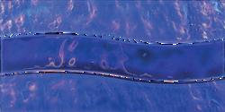 Cobalt Wave Mosaic