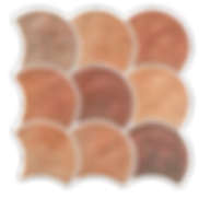 Scale Cotto 12x12 -resized.png