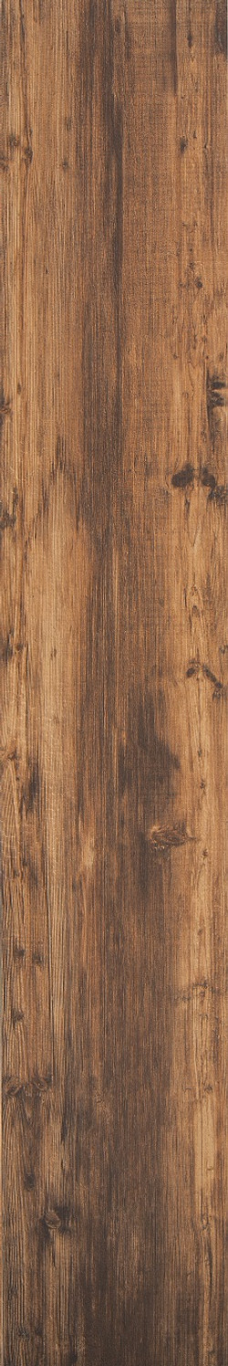 Larch Wood Sol