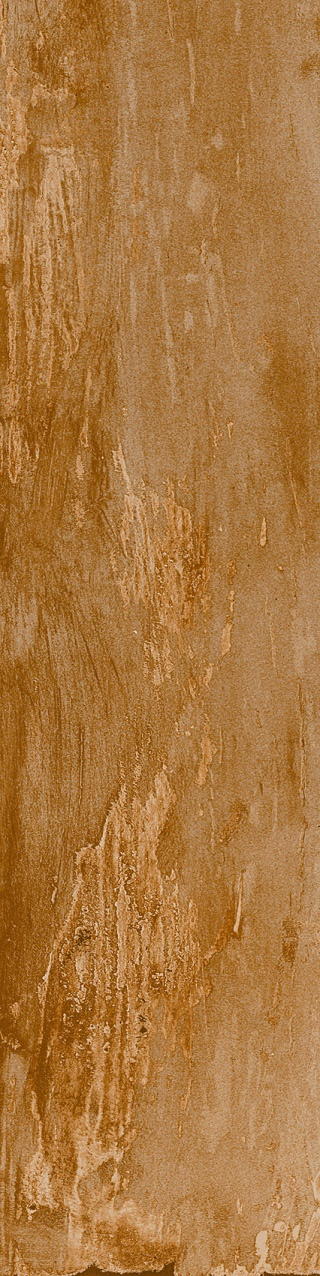 Marvel Wood E_edited